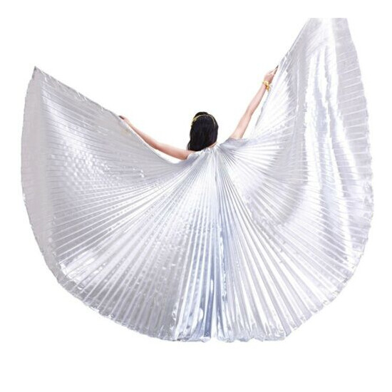 Professional India Egypt Angel Wings Belly Dance Costume Isis Wings Sticks Bag